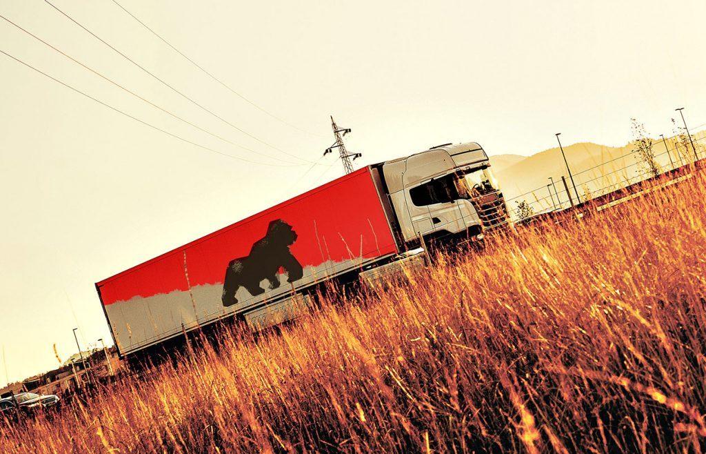 transport Cargorilla